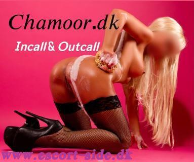 Nyt escortbureau Chamoor.dk